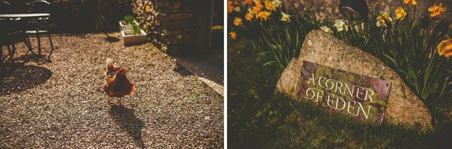 A chicken walks across the front garden of the cottage