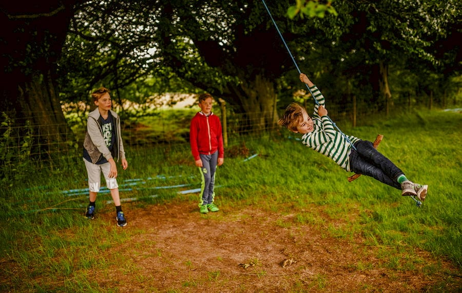 A boy swings from a rope hanging from a tree as his friends watch in the background